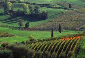 """Quale conversione ecologica in Toscana? Una proposta di Italia Nostra: le """"comunità energetiche"""""""