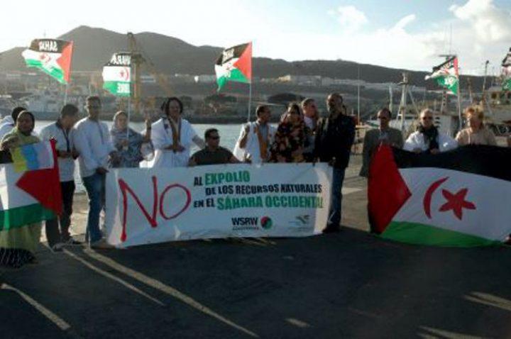 Westsahara: Gericht stoppt Phosphat-Frachter