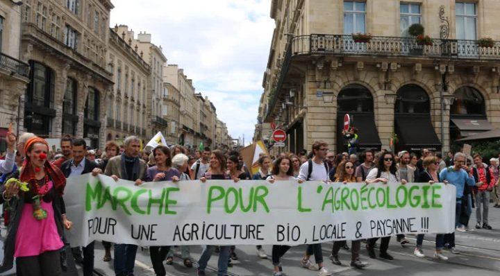 Marsch für Agrarökologie und gegen Monsanto-Bayer