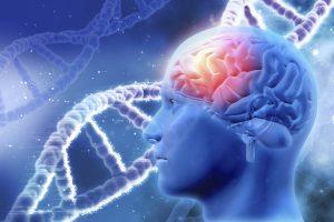 I biofotoni: la salute viene dalla luce che irradiamo