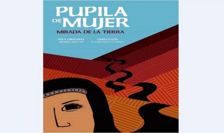 Rencontre «Droits humains et peuple mapuche au Chili et en Argentine»