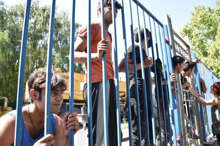 Refugiados en Serbia (2)