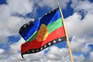 Urgente: queman casas mapuche en Vuelta del Río
