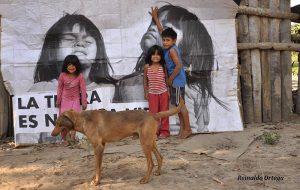 Comunicado urgente: Ley de emergencia territorial