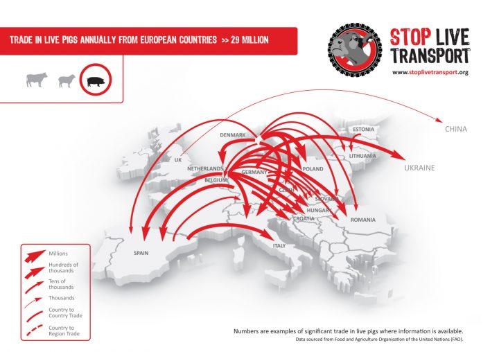 stop_live_transport_pigs_eu_map_final