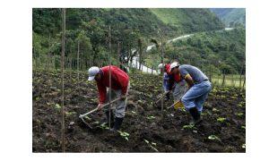 Une nouvelle avancée positive dans le processus vers une Déclaration des Nations Unies sur les droits des paysan.ne.s