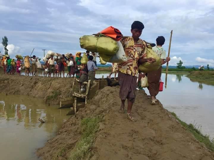 Rohingya Refugees at Cox's Bazar, Bangladesh