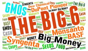 Too big to feed. L'agricoltura nella rete delle multinazionali