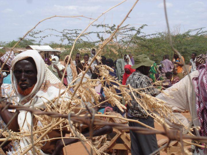 Migliaia di rifugiati somali costretti a lasciare il campo di Dadaab in Kenya