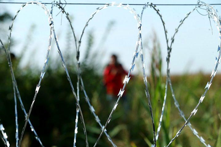 Oltre il 60% dei rifugiati presenta disagio mentale