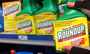 Glyphosate: Democracy 0 – Lobbyists 1