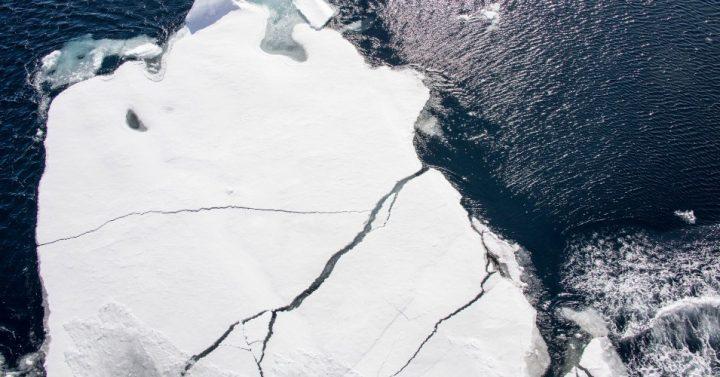 Déjalo ir: El ártico nunca se congelará de nuevo