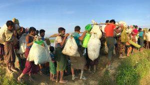 Rohingya: 5 nuevas fosas comunes descubiertas en el estado de Rakhine