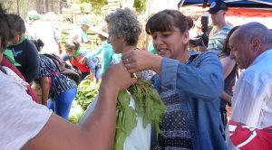 #Verdurazo en Buenos Aires: los pequeños productores entregan 20 mil kilos de comida