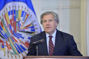 Ahora Almagro celebra el indulto de Fujimori