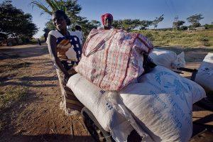 Aiuti umanitari: risorse in aumento, ma le ONG sono preoccupate