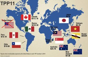 El TPP11 vulnera derechos humanos y principios democráticos básicos