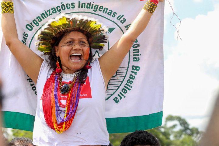 Giornata Mondiale delle Foreste: nuova denuncia di Greenpeace