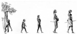 Sobre proceso humano: inteligencia artificial, avances tecnológicos, economía, renta básica…