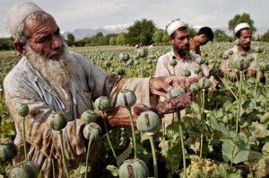 La guerra en Afganistán y los intereses extranjeros