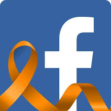Facebook Unfriends Democracy