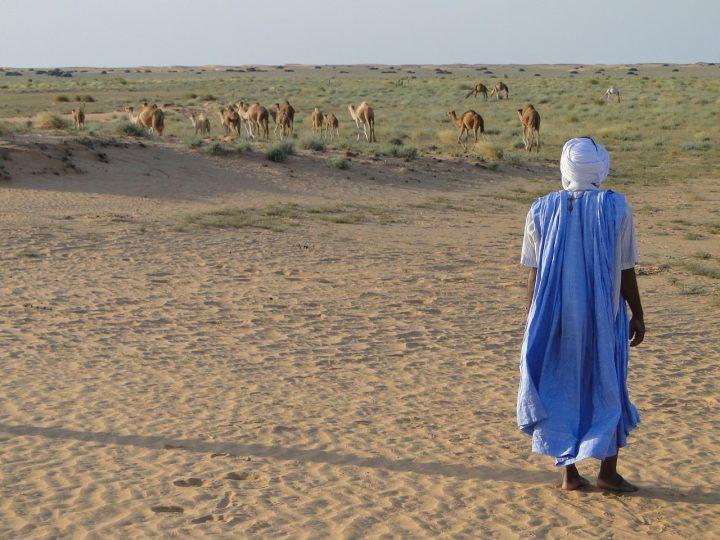 Verdict sans concession des experts du CERD aux Nations unies : La Mauritanie ne respecte pas la Convention internationale pour l'élimination de la discrimination raciale