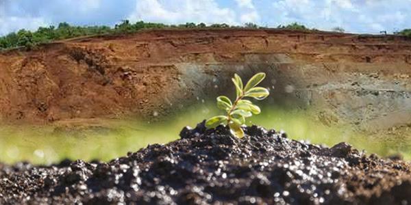 Filippine, rendere più verdi le miniere