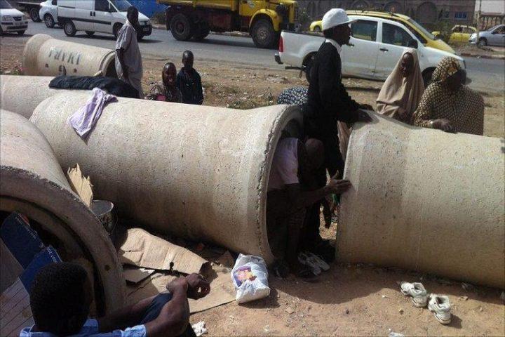 Inmigrantes en Argelia: amenaza a la seguridad nacional