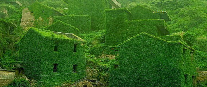 Si el hombre se va, la naturaleza recupera lo que es suyo