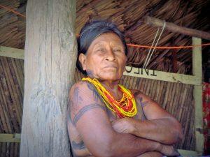 Pueblos indígenas y cambio climático: de víctimas a agentes del cambio