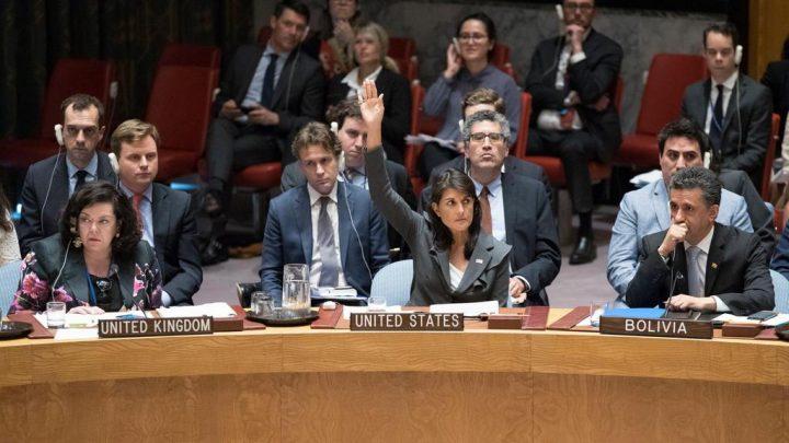 Protección de civiles en Palestina y el veto de Estados Unidos a un proyecto de resolución en el Consejo de Seguridad: breves apuntes