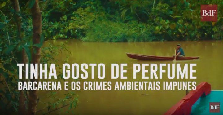 Documental denuncia crímenes ambientales graves en la Amazonia