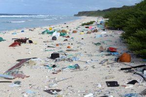 Greenpeace: nasce Plastic Radar, un'iniziativa per segnalare i rifiuti in plastica nei nostri mari