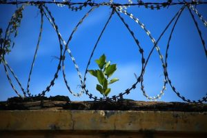 Οι Κρατούμενοι των Φυλακών Δίνουν (και) το Συσσίτιο τους στους Πληγέντες