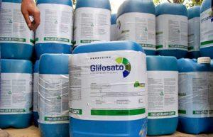 Monsanto vai a julgamento nos EUA por agrotóxico cancerígeno