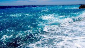I cambiamenti climatici trasformeranno gli ecosistemi marini e d'acqua dolce