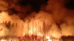 La California in fiamme: fra pandemia, incendi e vantaggi politici