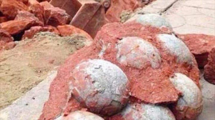 Descubren en China huevos de dinosaurio intactos