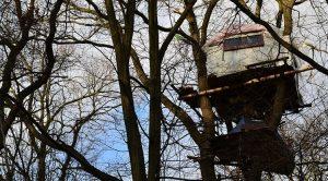 Attac fordert weiter zum Protest im Hambacher Forst auf