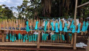 Ebola in RDC: nuovi trattamenti e pilastri tradizionali per la risposta all'epidemia