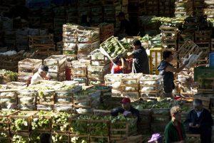 Cerca de 820 millones de personas padecen hambre en el mundo, estima ONU
