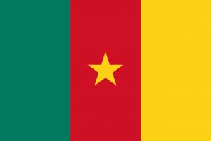 Elecciones en Camerún marcadas por conflicto separatista