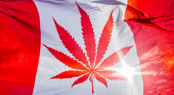 Cannabis auf Rezept: Weitere Engpässe in Deutschland durch Legalisierung in Kanada?