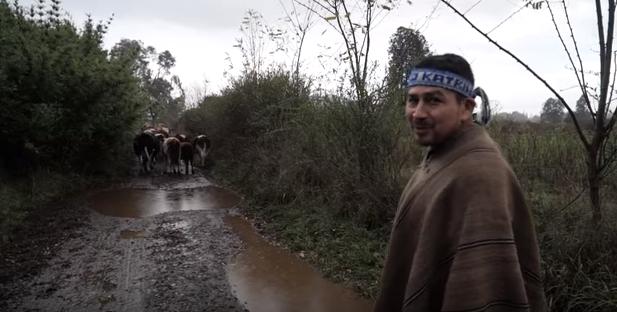 """Abogado de Luis Tralcal contra El Mercurio: """"Antes llamaba a eliminar a los mapuche y ahora publica diez días antes de la resolución exacta"""""""