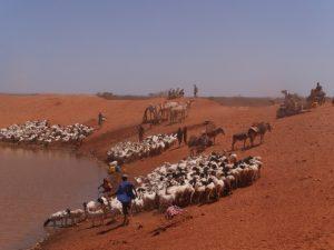 África se mantiene decidida rumbo a la COP24