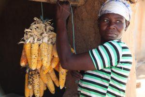 La dichiarazione per i diritti dei contadini: un grande traguardo, ma il cammino è lungo