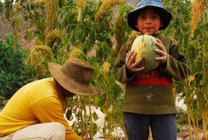 Syngenta y el agronegocio no pueden alimentar a los argentinos