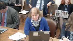 """Sara Larraín pide a diputados """"suspender tramitación del proyecto de reforma al SEIA"""" por ser un """"retroceso en estándares de legislación ambiental"""""""