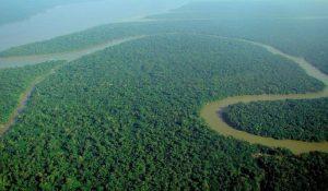 Las selvas más peligrosas del mundo y ecosistemas más imponentes de la humanidad