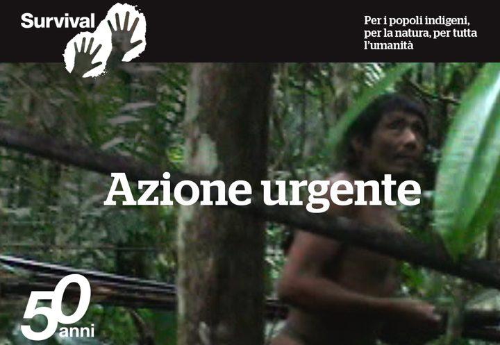 4 settimane per salvare i Kawahiva dell'Amazzonia da Bolsonaro